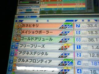 200805051408000.jpg