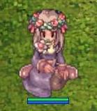 お花の妖精