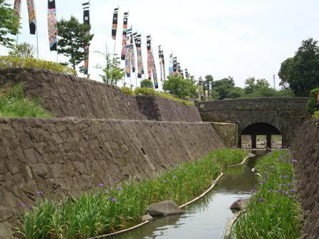 高瀬裏川花しょうぶ祭り