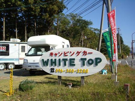 ホワイトトップ