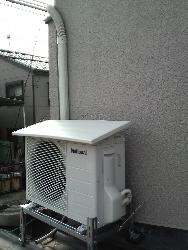 P1000049(1).jpg