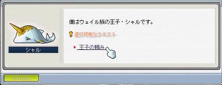 080807シャル クエスト