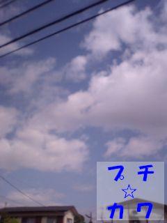 netaga_0425-02.jpg