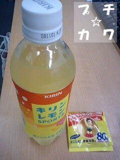 netaga_0522-01.jpg