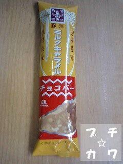 netaga_0528-01.jpg