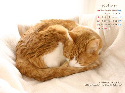 20080401s_ku.jpg