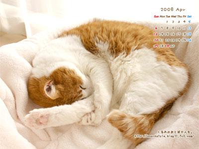 20080401s_ku2.jpg