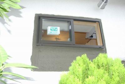 20080805sakan_2.jpg