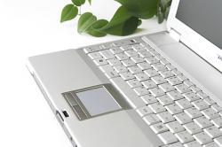 ノートパソコン・観葉植物