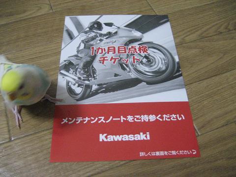 IMG_0853trs.jpg