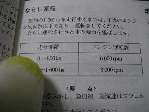 IMG_0882nss.jpg