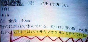 図鑑にも載ってるんだって!!