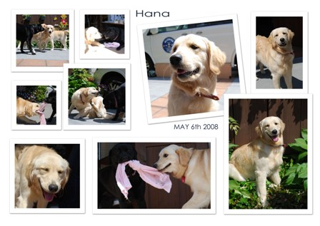 hana_edited-1_1.jpg