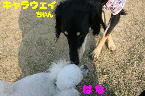 IMG_6196.jpg