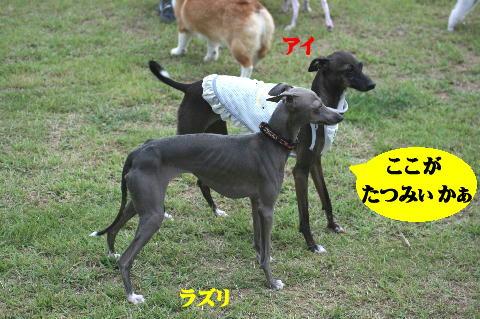 IMG_9612.jpg