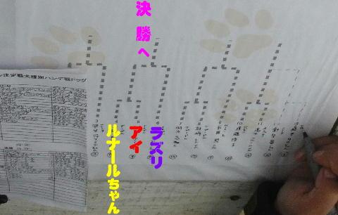 RIMG0494.jpg