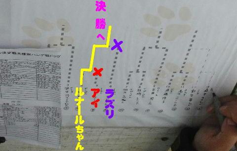 RIMG04941.jpg
