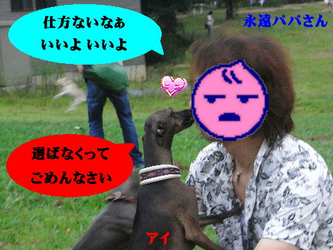 RIMG20_20080722190945.jpg