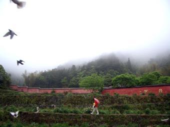 2008・5・27雪峰寺7