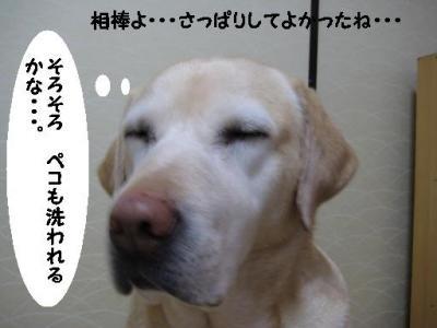 IMG_05461.jpg