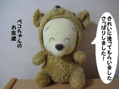 IMG_06661.jpg