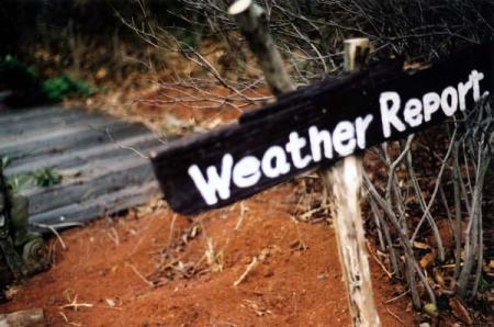 weather report という名のカフェ