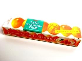 20080609-2 マンゴーヨーグルトのど飴
