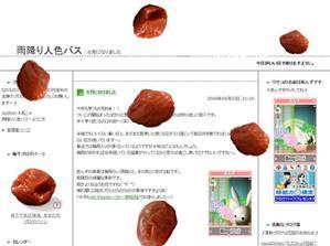 20080603 梅干ブログパーツ