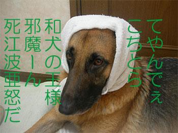 furoagari.jpg