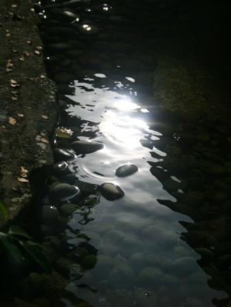 20080627 006