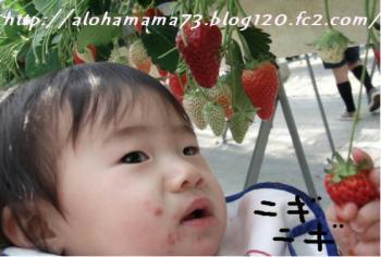 20080323233039.jpg