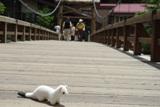 20080625河童橋