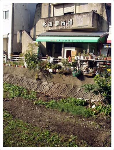 nagataichiba.jpg