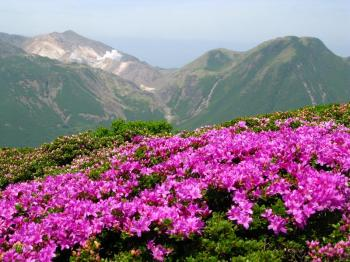 miyamakirishima view