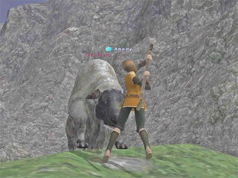 羊を殴る!