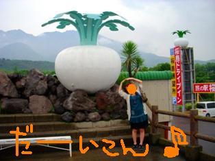 080613sakurajima3.jpg