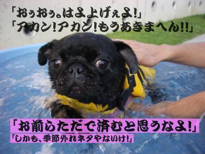 20080319_言葉9