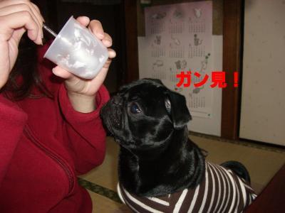 20080401_オッサン実家4