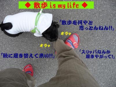 20080524_10