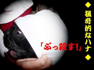 20080601_10