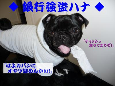 20080603_09