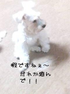 wannzu 080