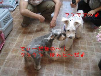 hitoshi 045