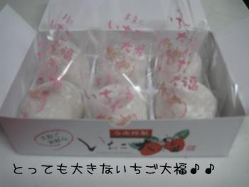 hitoshi 053