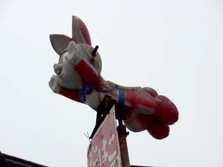 飛ぶウサギ