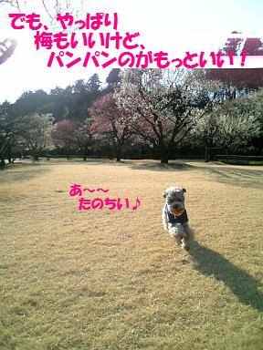 2008031912.jpg