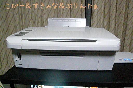 P1010945.jpg