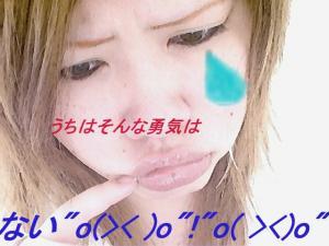 20070219140408.jpg