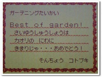 村長からの手紙