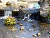 2007_02_11-011.jpg